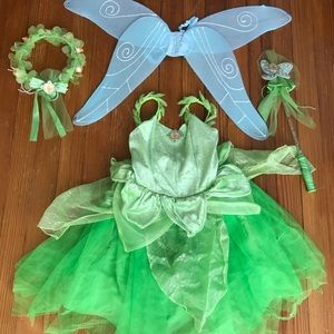 OFFICIAL Disney Parks Tinkerbell Costume Package 6